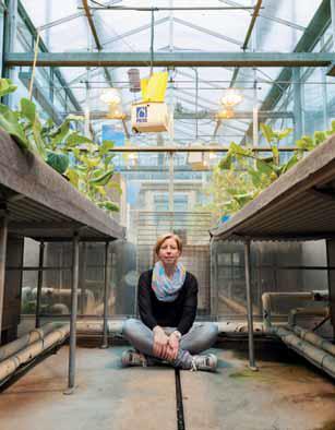 Colette Broekgaarden
